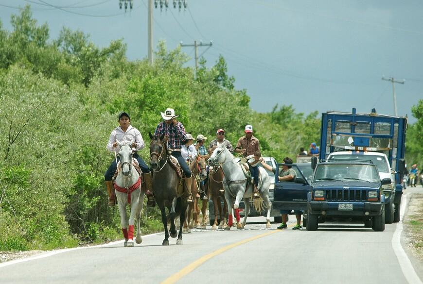 Дикая природа и редкая Нетуристическая Мексика: как ее посмотреть?