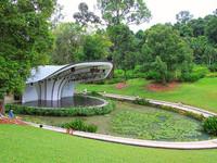 Сингапур. Ботанический сад.