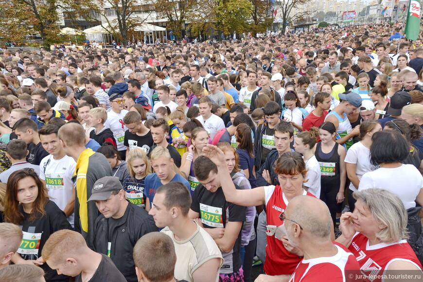 Участники полумарафона бежали три дистанции: 5,5, 10,55 и 21,097 километра.