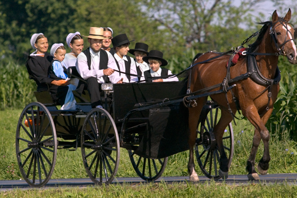 an overview of traditions and beliefs of the amish religious group Meeting the religious and spiritual needs amish overview of the amish faith amish beliefs and practices.