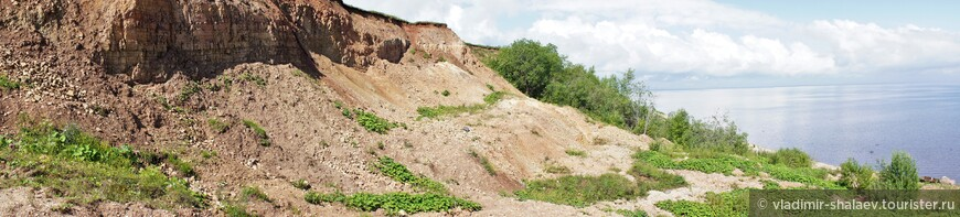 Протяжённость глинта 8 км, высота  до 15 метров. За деревней Пустошь. обрыв понижается и, в итоге, сходит на нет.