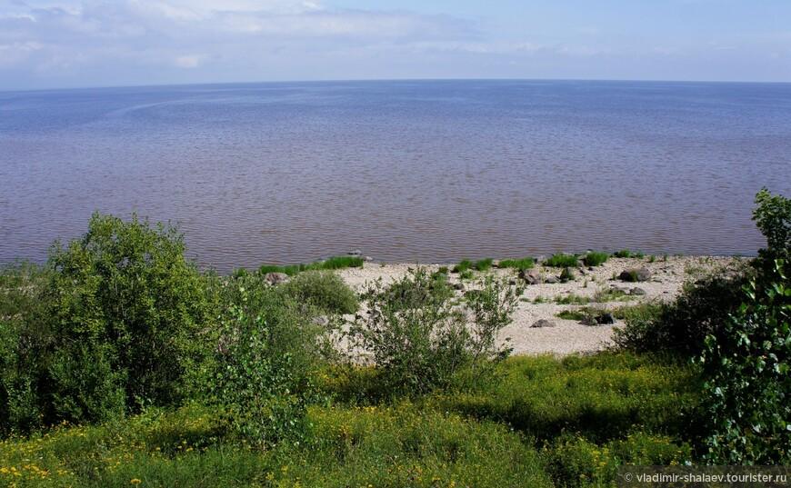 Вид на озеро Ильмень от начала Ильменского глинта. Здесь можно подняться на дорогу и вернуться в деревню Коростынь.