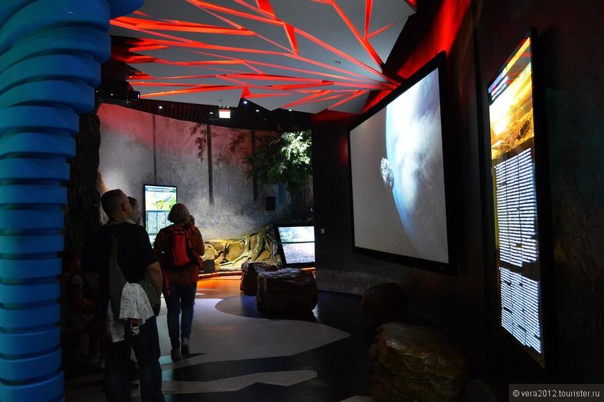 Во многих залах можно не просто отдохнуть,но и посмотреть фильмы об эволюции планеты, морских обитателях