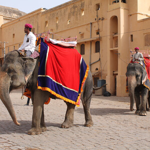 Подъём на слонах к форту Амбер