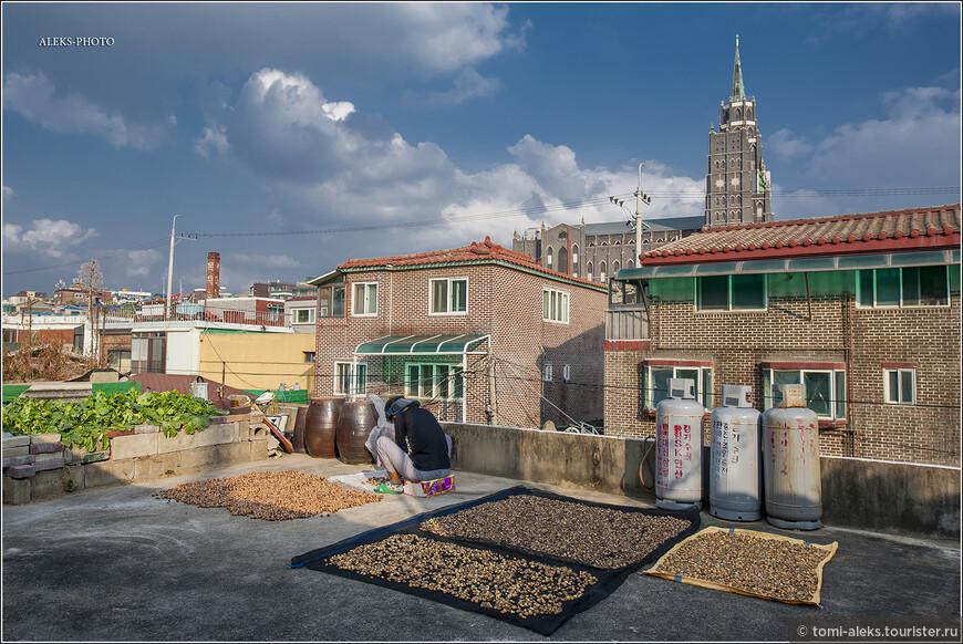 Многие таинства корейских заготовок, как я понял, происходят на крышах домов. Чуть позже с собора мы увидим, что крыши всегда плоские. И на них часто что-то сушиться.