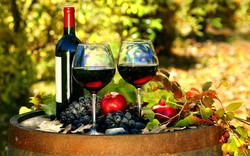 В Германии начался крупнейший в Европе винный фестиваль