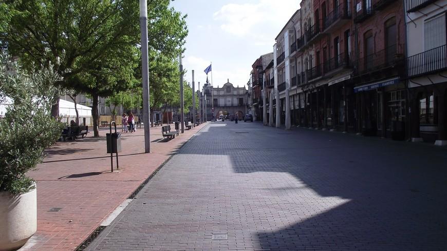 В Средние века Медина-дель-Кампо являлся достаточно крупным торговым городом, стоявшем на пересечении нескольких путей, в связи с чем здесь каждую весну и осень устраивали большие ярмарки, собиравшие множество людей из стран Европы и Африки. Здесь была создана, говоря современным языком, этакая офшорная зона. В конце 15 столетия между Испанией и Англией был подписан специальный договор, по которому в Медине-дель-Кампо открывался специальный беспошлинный рынок, где купцы из этих двух стран могли обмениваться товарами. Действие этого договора длилось 96 лет, в течение которых Медина-дель-Кампо была самым преуспевающим городом на Пиренеях.