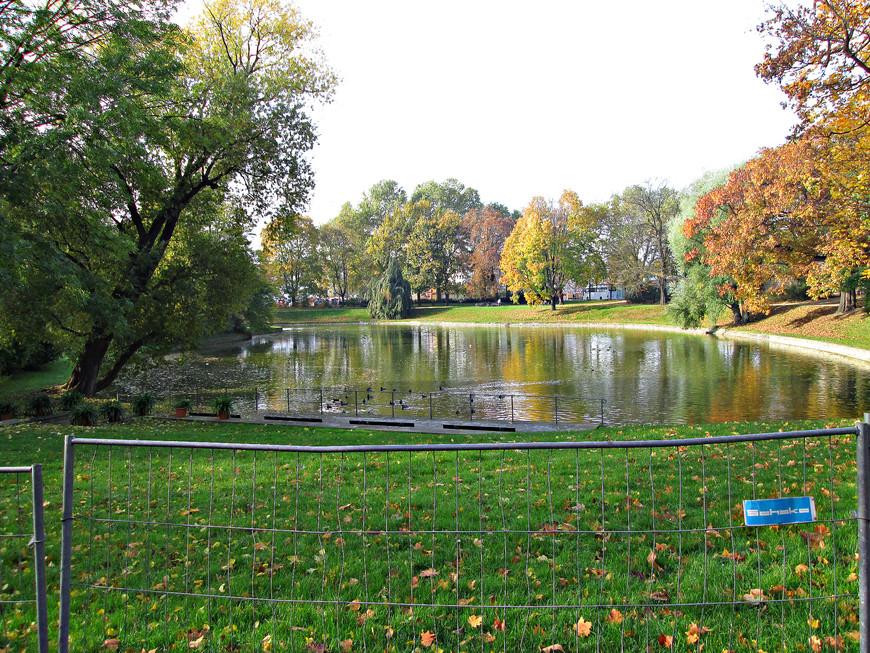 Первое, что мы увидели, выйдя из автобуса, это окруженный небольшим парком пруд Цвингера. Очень живописное место. Если не знаешь, то и не догадаешься,  что находишься в самом центре полумиллионного города.
