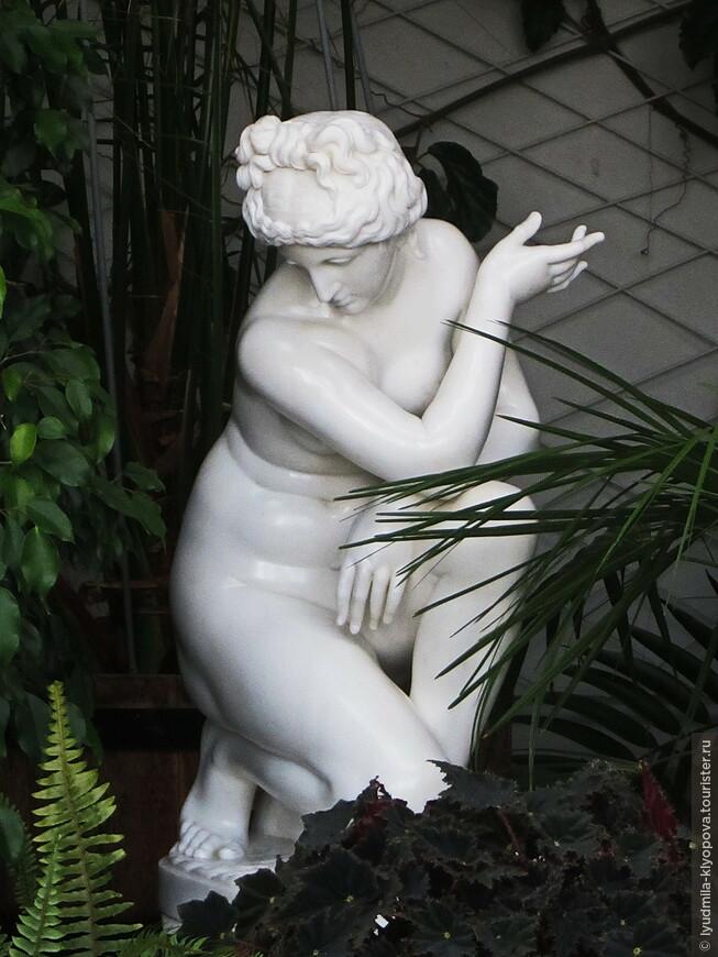 """Среди сочной зелени зимнего сада немало произведений известных скульпторов или копий классических образцов. Например, это копия работы древнегреческого скульптора Дойдалса """"Купающаяся Афродита""""."""