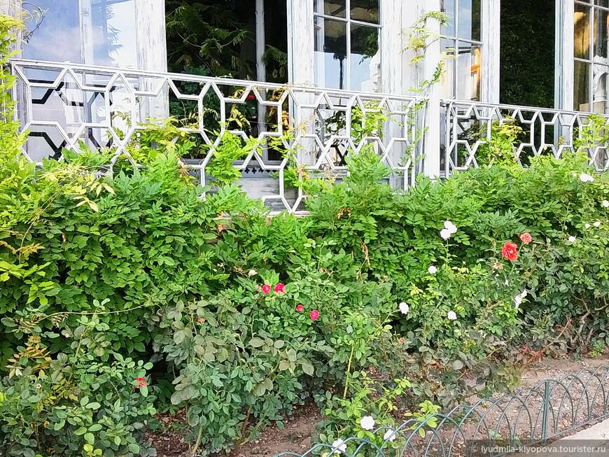 Во дворце есть зимний сад. Обычно в музеях зимние сады не сохраняют, однако Воронцовский дворец стал приятным исключением. По проекту здесь должна быть открытая галерея, но очень скоро её застеклили и заполнили растениями, которые не переносят даже тёплую крымскую зиму: австралийскими араукариями, финиковыми пальмами, монстерами, фикусом-репенсом, увившим стены зимнего сада.