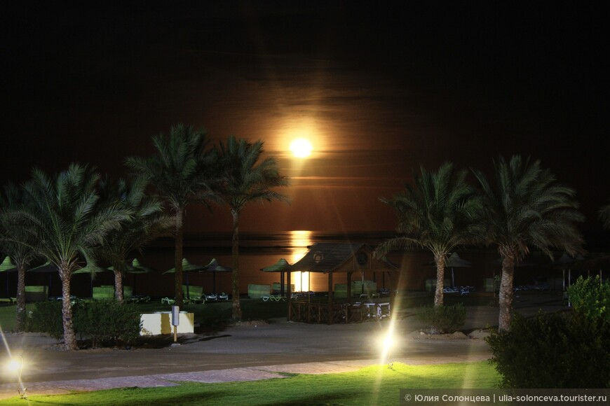 г. Хургада, Египет