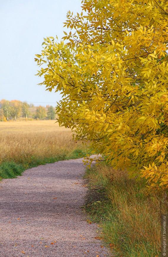 Ходить в заповеднике надо по дорожкам - и природе хорошо, и сами целее будете.