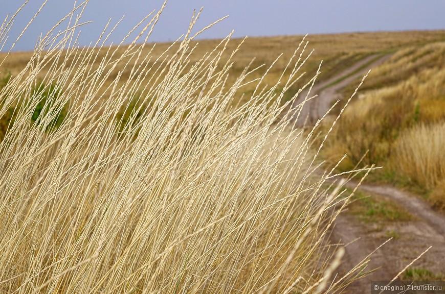 Осенью степь седеет, вспоминая каждого своего ушедшего сына или дочь. Колышутся травы, плачет земля, печалится.