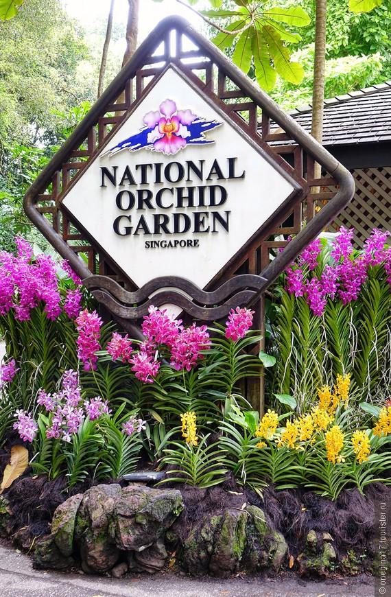 """Орхидеи встречают на входе в """"Сад Орхидей"""". То, что ждет внутри, не передать словами и фотографиями!"""