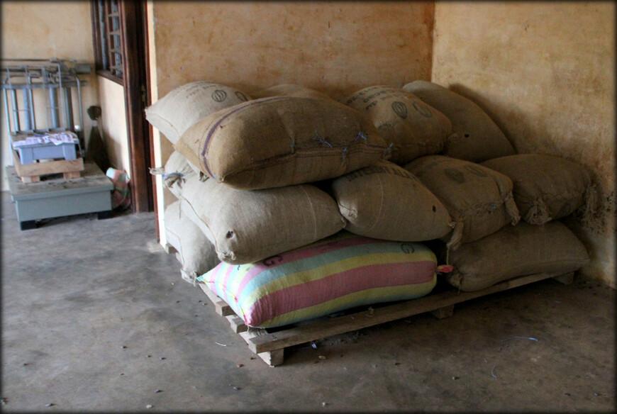 Прогулялись вдоль торговых заведений. Если многие сельскохозяйственные культуры жители выращивают для себя, то кофе и какао в регионе собирают для экспорта.