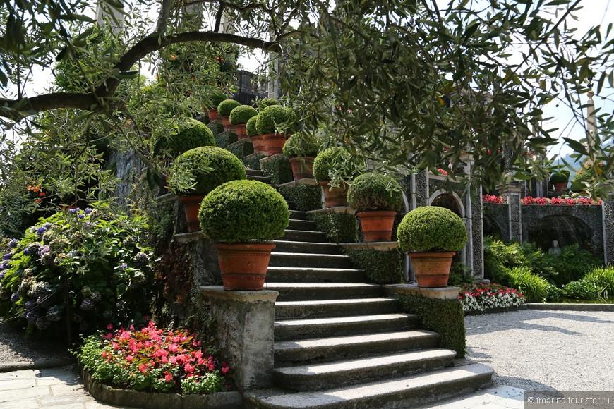На вершину амфитеатра ведут лестницы из серого гранита, по бокам которых установлены горшки с подстриженными в форме шара кустами самшита. Это самая старая часть сада и она дошла до наших дней в неизменном виде.