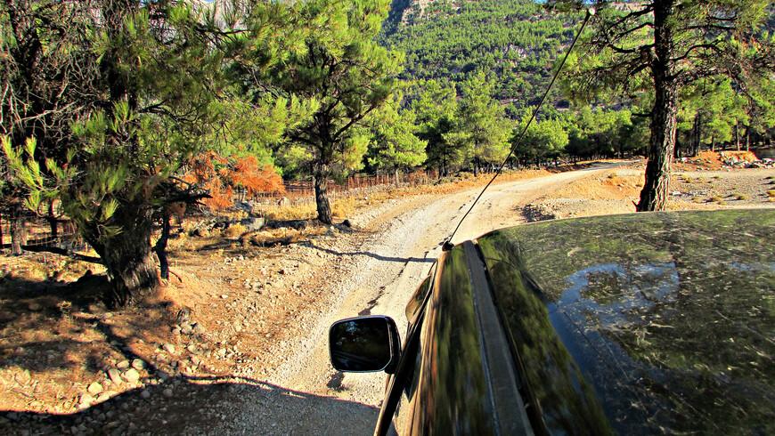 Асфальт между тем кончился, и наш «Ranger», почти не сбавляя скорости, мчался прямо по проселку.