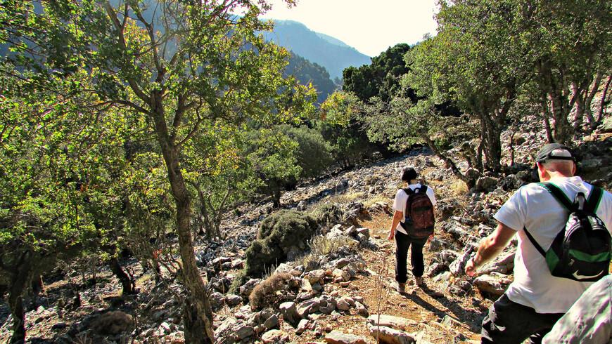 Увидев, что все готовы, наш гид пригласила следовать за собой и стала осторожно спускаться вниз по склону.