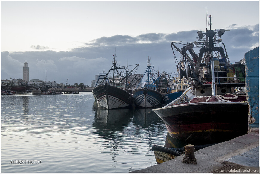 Жизнь всей страны неразрывно связана с Атлантическим океаном, на берегу которого находится большая часть городов страны. Марокко занимает одно из ведущих мест в мире по добыче сардин, поэтому большинство кораблей - рыболовные сейнеры...