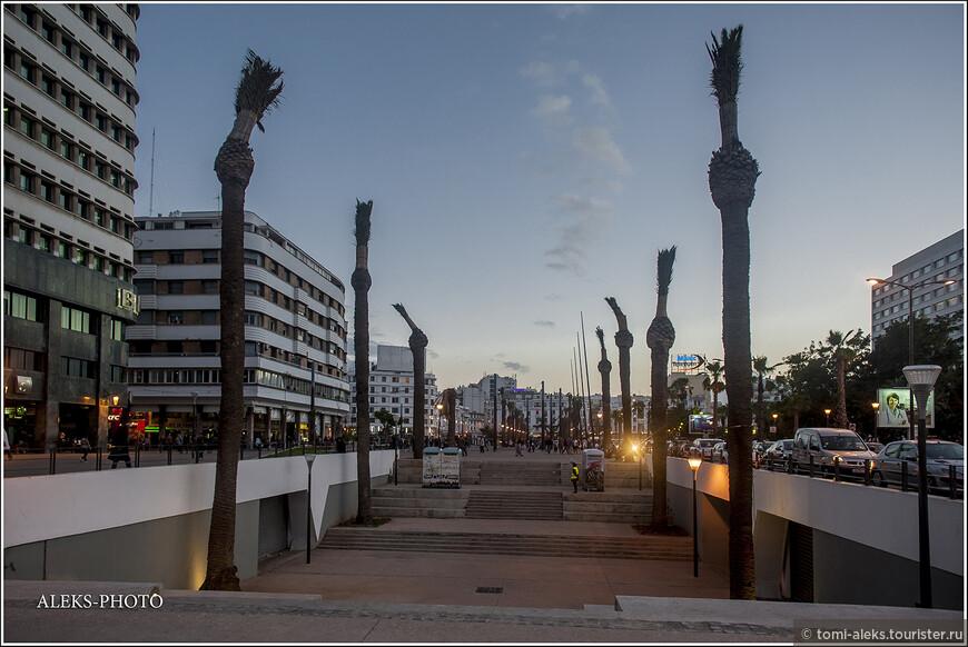 Такие обрубки пальм можно увидеть в Марокко повсюду. Выглядят они, конечно, не эстетично...