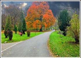 Вена и пригороды. Золотая осень.