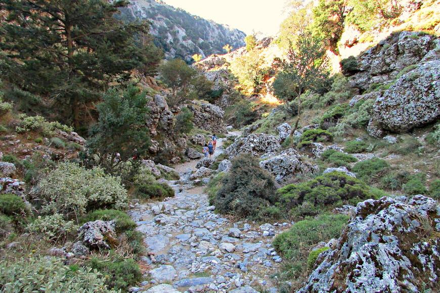 В течении многих веков эта тропа была единственной дорогой, по которой жители горного Крита добирались до моря. Сейчас вдоль ущелья тянется шоссе.