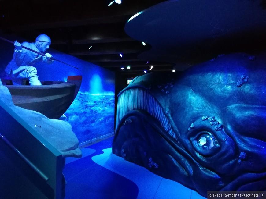 Отдельный зал посвящен китобойному промыслу.