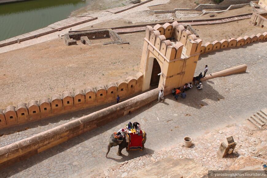 Также отсюда видно, как туристов везут в форт Амбер на слонах.