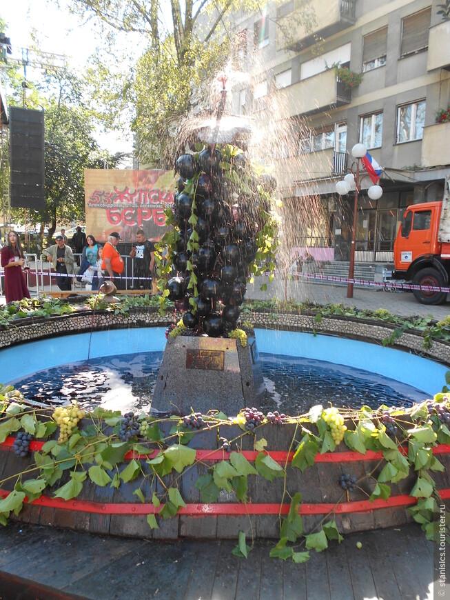 Традиционный праздник «Жупский урожай» (серб. ''Жупска берба'') - вино, музика, начало уборки виноградника в конце сентября.
