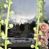 Домики XVII века, жилые лодки, цветы - самое голландское!