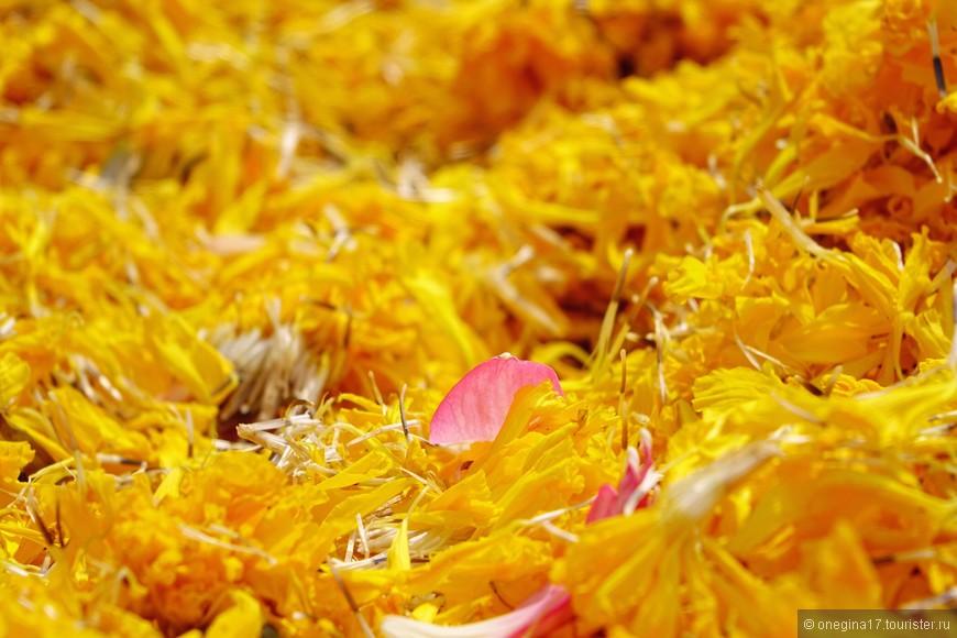 Такое обилие лепесков я встретила только в храме Золотого Будды.
