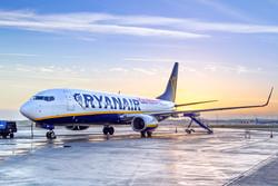 Самолет экстренно сел в Италии из-за массовой драки на борту