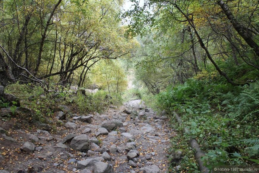 Дорога проходит через лес. Ну как дорога… Это больше напоминает насыпь из булыжников. Такое чувство, что здесь текла речка с мощным течением, которая и принесла с собой эти камни.