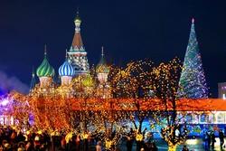 Главную новогоднюю ёлку России доставят в Кремль 17 декабря