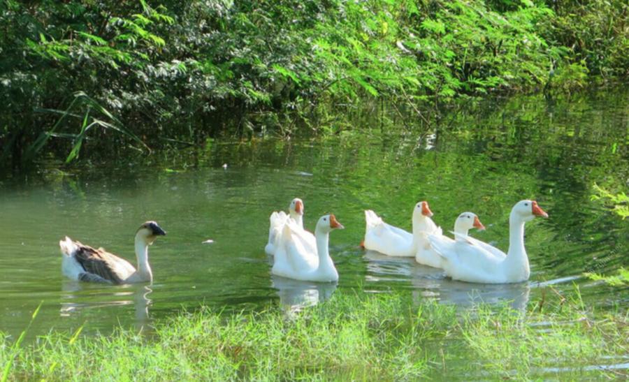 суходольское озеро рыбалка