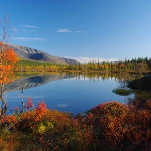 Золотая осень на Полигональныx озераx.