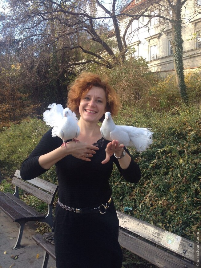 Интересно, что дьявол и ведьма могут превратиться в любого зверя и птицу, только не в овцу и голубя.  В Праге я организовывала золотую свадьбу, когда на руки золотой паре сели голубки пожилые люди были так растроганы, что даже прослезились. Мне тоже голуби сели на руки, один приземлился на мою пышную шевелюру, такую фотографию обещали выслать. Когда они рядом порхают белыми крылышками, танцуют, воркуя, кажется всё легко.