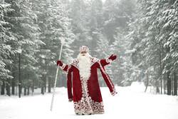 Россия - в ТОП-5 самых популярных новогодних направлений у россиян