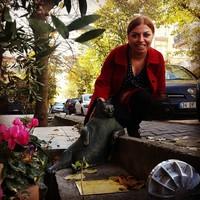 Памятник коту Томбили вернулся в Стамбул