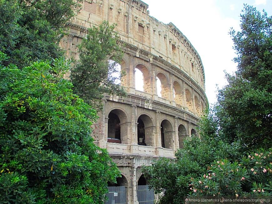 Ну, и конечно же, самый известный и узнаваемый символ Рима- древний Колизей. Внутри мы не были, но снаружи он выглядит не менее впечатляюще.