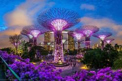 Турпоток в Сингапур вырос на 13%