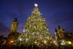Главная ёлка Чехии откроется 26 ноября