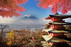 Россия и Япония будут развивать туризм и упростят визовый режим