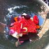 Премудрости мишленовской кухни - тончайший розовый хлебец, под ним рыбка, ну и украшения...