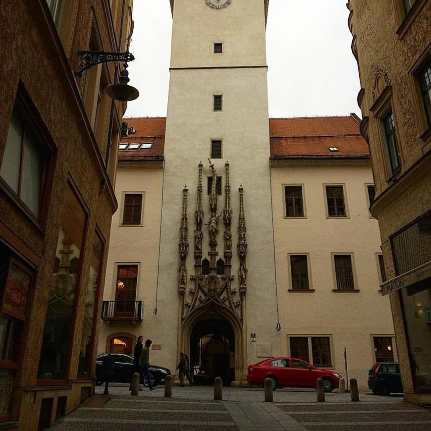 Готический портал, ведущий во двор старой ратуши, где Вас встретит чучело крокодила.