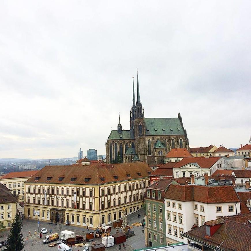 Вид на город и кафедральный собор Петра и Павла с башни старой ратуши города Брно. Входной билет 60 крон.