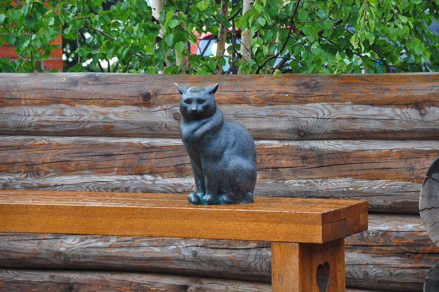23. Кошка мокнет под дождем… и я тоже.