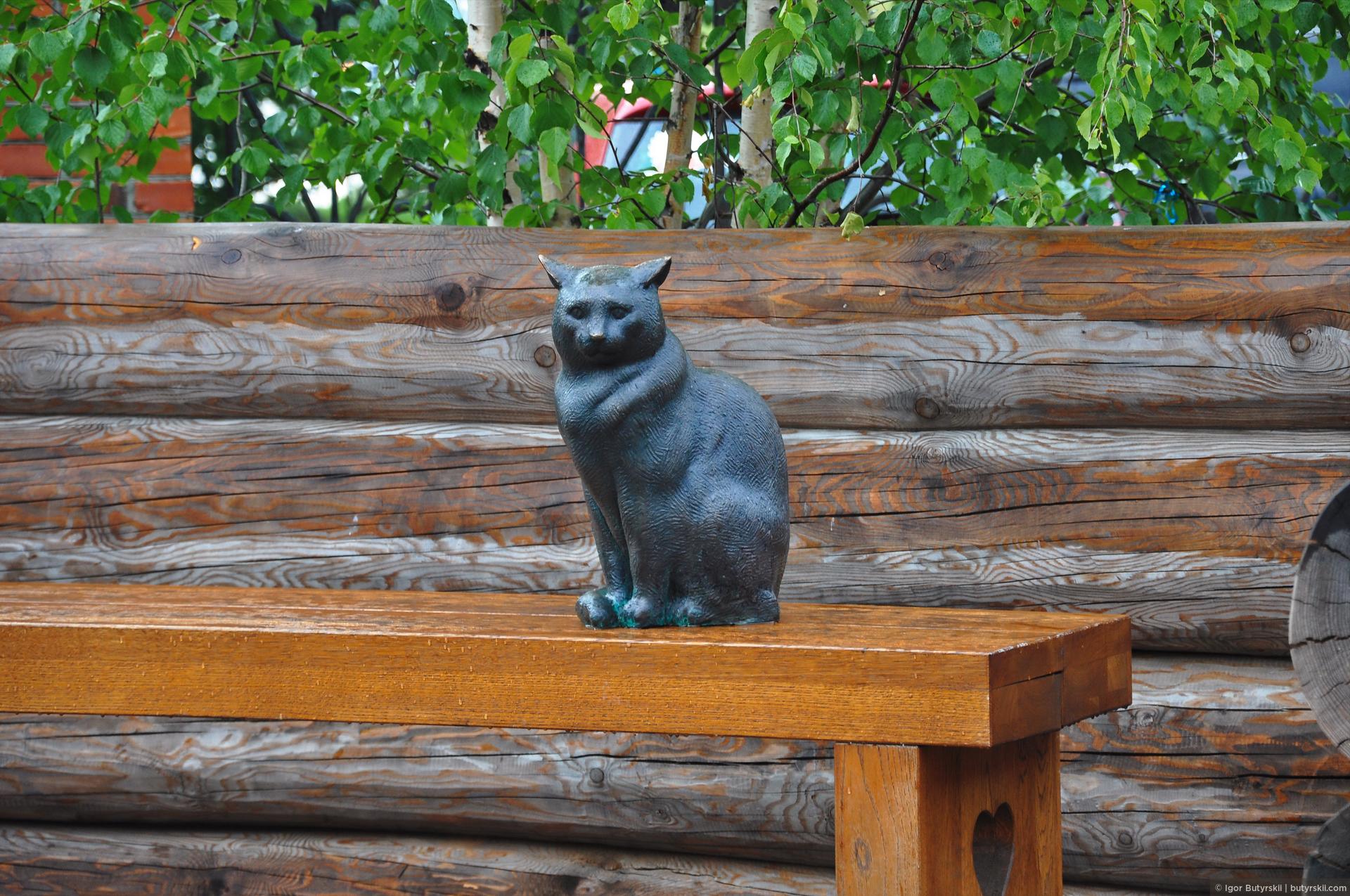 23. Кошка мокнет под дождем… и я тоже., Сургут