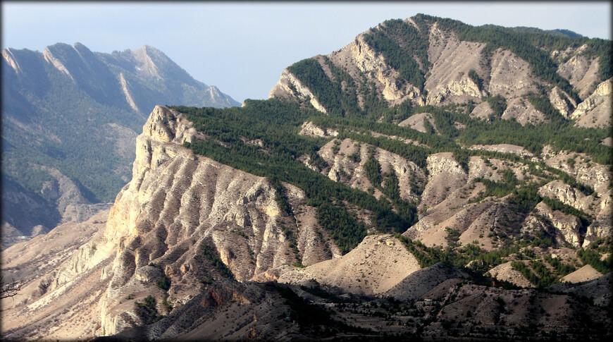 В субальпийских и альпийских лугах преобладают овсяница, клевер, астрагал, голубая скабиоза, синие генцианы и др. На высоте 3200-3600 метров: мхи, лишайники и другие холодоустойчивые растения.