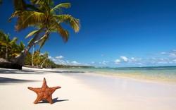 Российский турпоток в Доминикану вырос на 125%